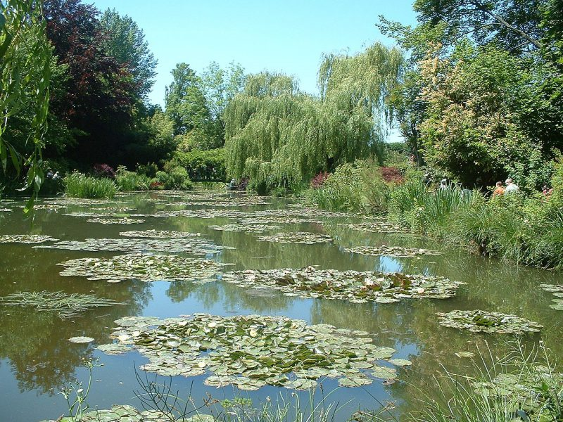 Giverny_nympheas